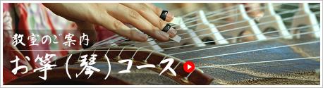 お箏(琴)コース